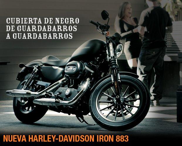Harley Davidson 883 Iron Wallpaper. Harley-Davidson.